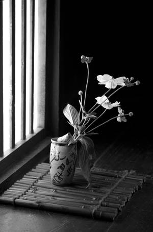 Floral Offering | John Alexander